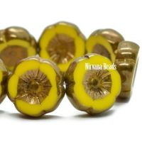 12mm Hibiscus Flower Dandelion with a Bronze Finish