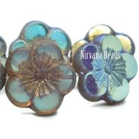 21mm Hibiscus Flower Transparent Glass with An AB and Bronze Finish