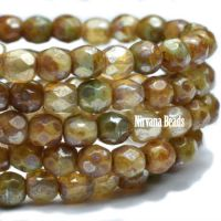 3mm Faceted Round Firepolished Bead Champagne Mix