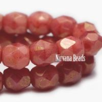 4mm Faceted Round Firepolished Bead Salmon with a Gold Finish