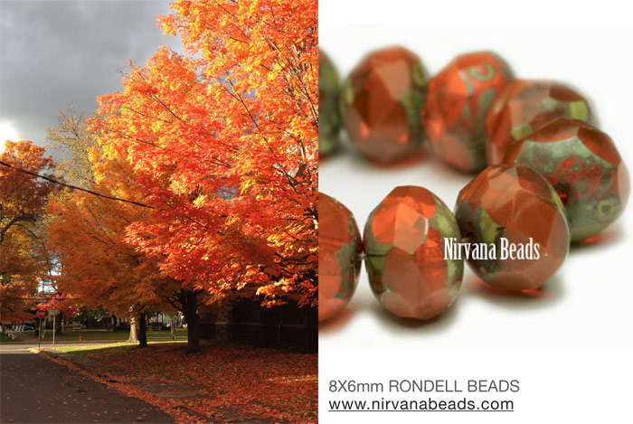 Rondelles and New york Fall