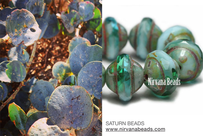 Saturn beads and desert plant